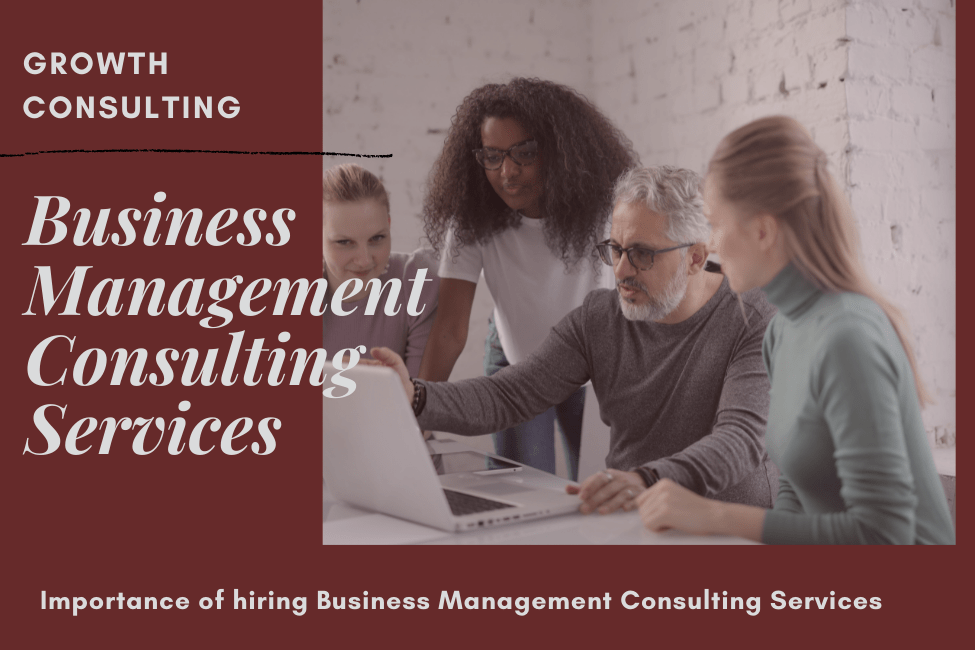 Business Management Consulting Services